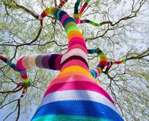 Yarn Bombing - Street art