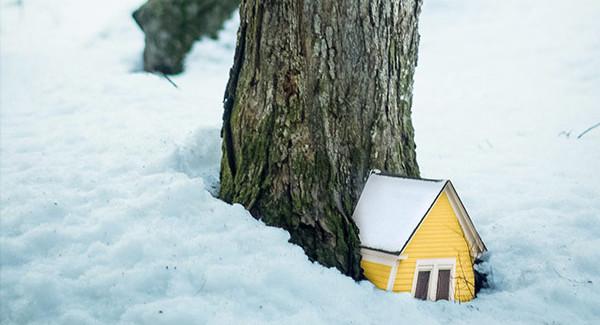 Daniel Barreto - Woodhouses