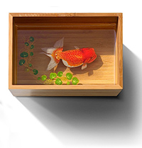 Riusuke Fukahori - Pesci nella resina