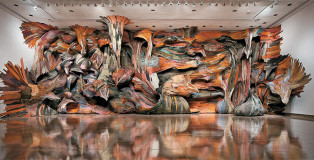 Henrique Olivera - Installation