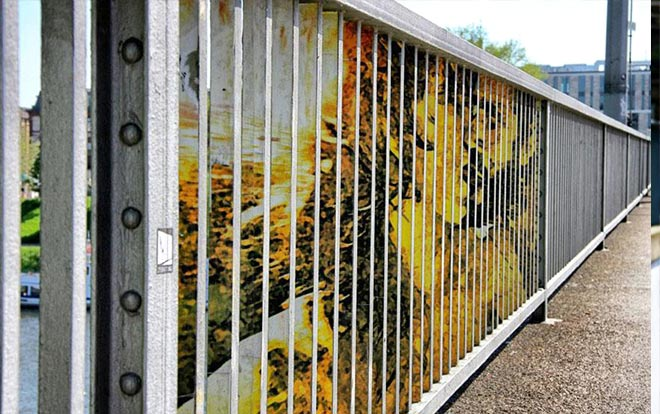 Zebrating Art - Graffiti nascosti