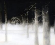 Mostri selvaggi - Omaggio a Sendak Babalibri - Sonia Maria Luce Possentini