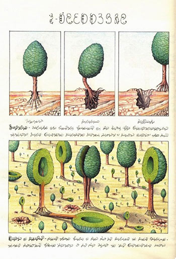 تحميل كتاب codex seraphinianus