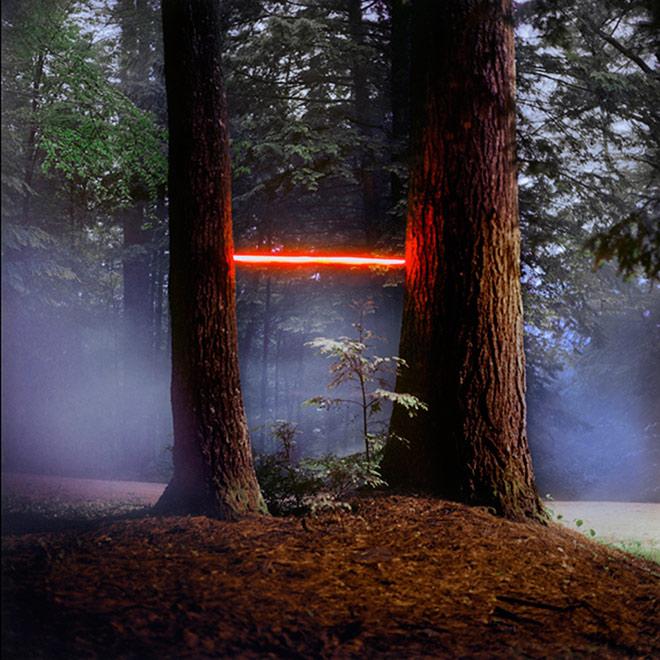 Barry Underwood  - Tree (MacDowell), 2013