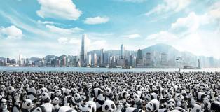 1600 pandas World Tour - Hong Kong