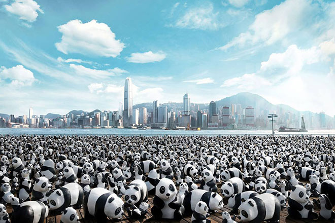 1600 pandas World Tour – Hong Kong