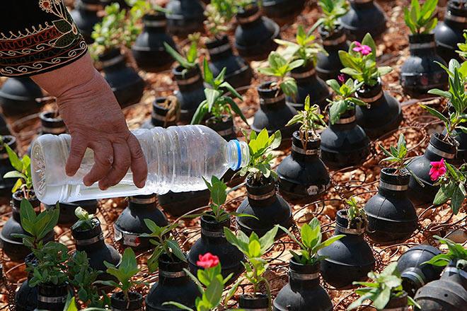 Dalle granate nascono i fiori - Giardino creativo in Palestina