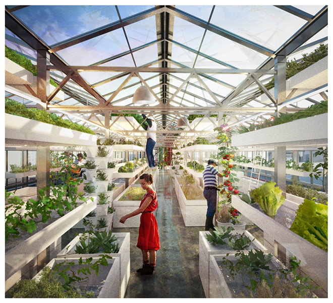 Urban farmers rooftop – Design strategico