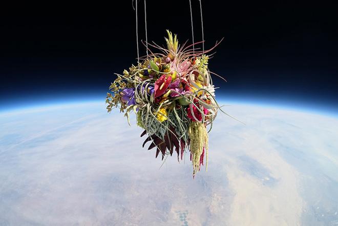 Exobiotanica, Botanical space flight