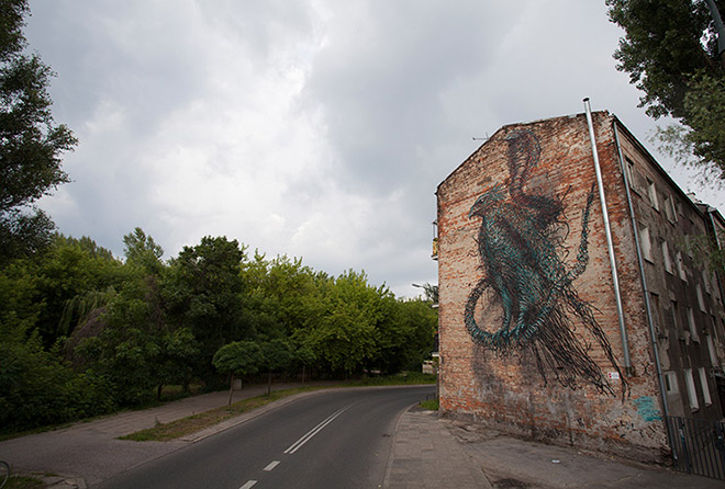 Dormant Antennae - Warsaw, Poland