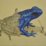 Ricardo Solìs – Animal's creation
