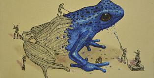 Ricardo Solis - Frog