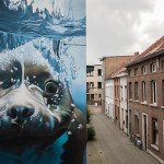 Smates – Hyperrealistic dog under water mural