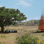 Warka Water – Architecture and Vision