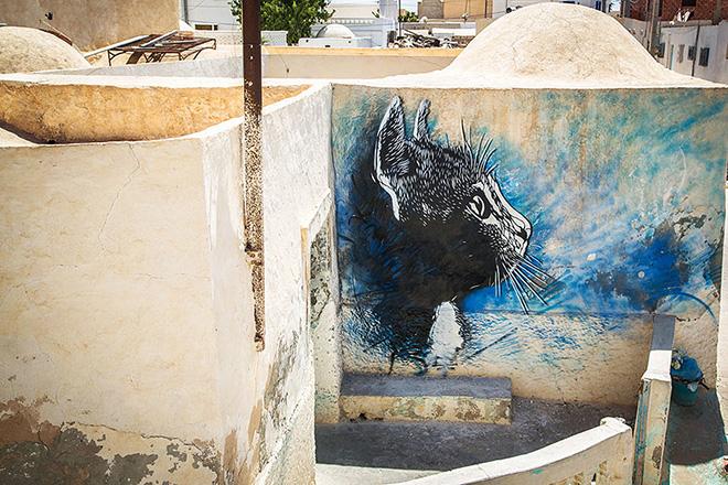 Il villaggio della street art in Tunisia, painting of a cat by french artist C215