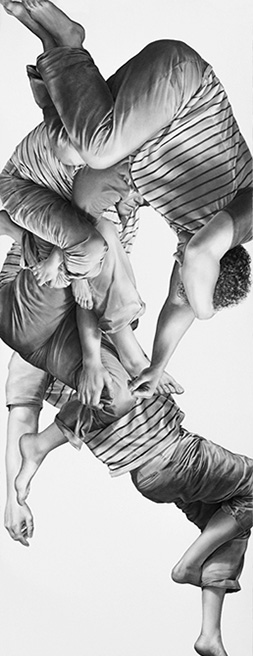 Leah Yerpe - Tucana, 18 X 50 Inches Graphite And Ink On Paper, 2012