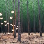 Lumio – Una lampada, mille possibilità