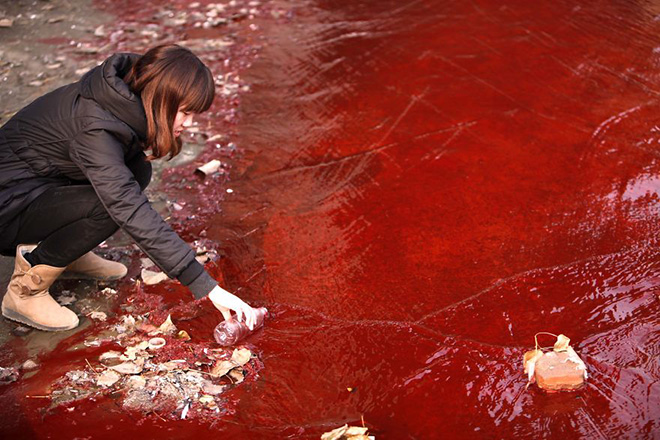 A journalist takes a sample of the Jianhe River, which has become red from chemical plants illegally dumping untreated waste water directly into a local stream.