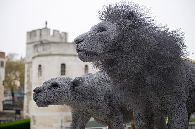 Kendra Haste – Wire sculptures