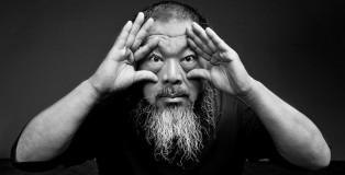 Ai Weiwei - Il giardino incantato, Mantova - Palazzo Te