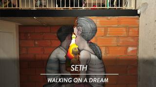 Seth - Walking on a dream