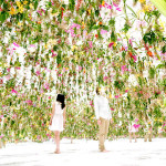 Floating Flower Garden – TeamLab