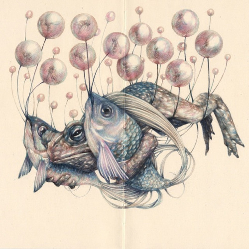 Marco Mazzoni - The carrier - colored pencils