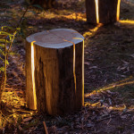 Duncan Meerding – Cracked Log Lamps