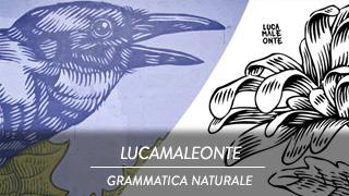 Lucamaleonte - Grammatica naturale