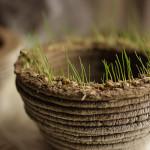 PrintGreen – Stampare la natura