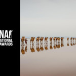 Siena Art Photo Festival – Beyond the Lens