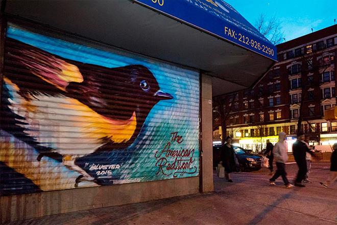 The audubon mural project new york invasa da volatili for American mural project