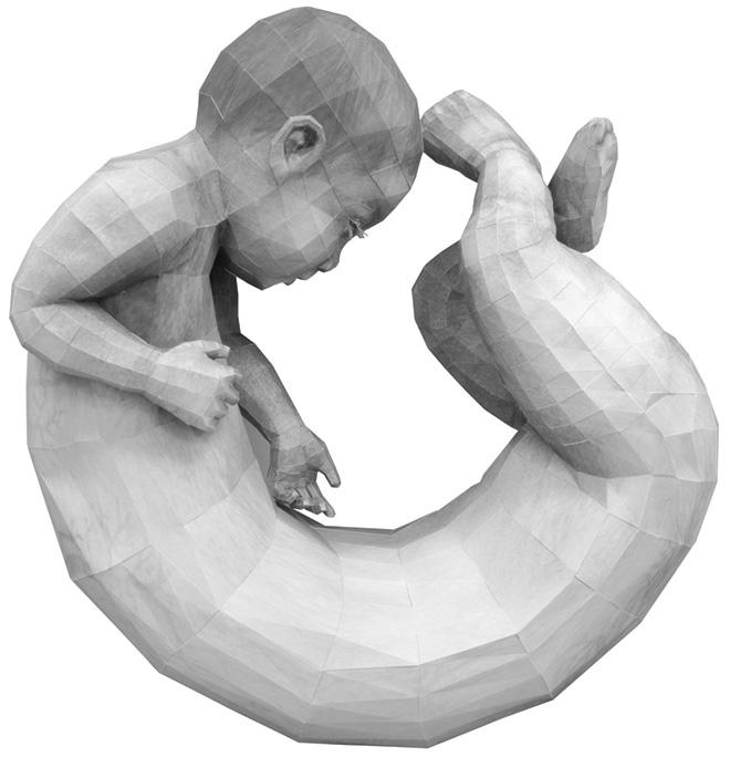 Ann Hoi - O, 2013, paper sculpture