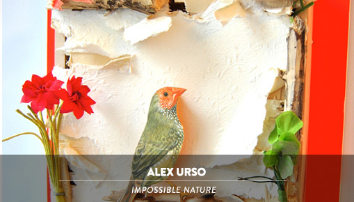 Alex Urso - Impossible Nature