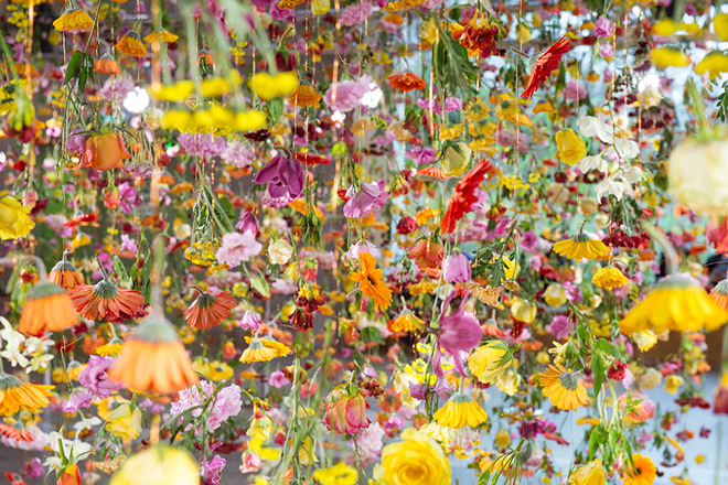 Rebecca Louise Law - Garden Suspended in the Air