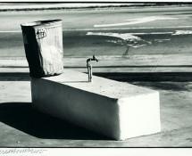 Robert Rauschenberg - Statue and Sprimkler, s.d