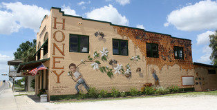 Matthew Willey - The Good of the Hive, Harold P. Curtis Honey Co LaBelle - Florida