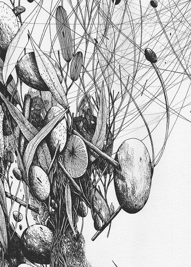 Tellas - Impressioni, detail, 2016