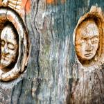 Andrea Gandini – Il nuovo volto degli alberi