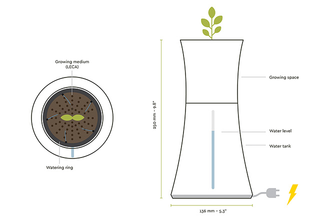 Botanium - Grow edible greens, illustration