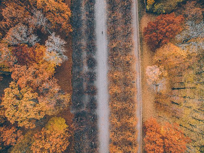 Tobias Hägg - Airpixels, Tones of Autumn
