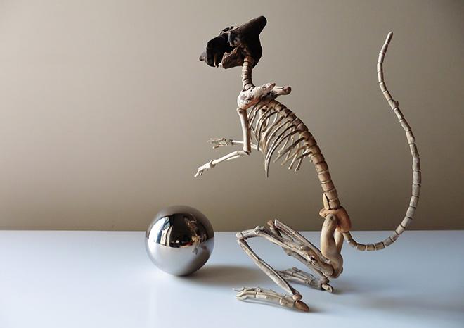 Giovanni Longo (Italia) - Distanza zero, 2015, legno, gommapiuma, ferro zincato, sfera in acciaio inox, cm 30x26x10