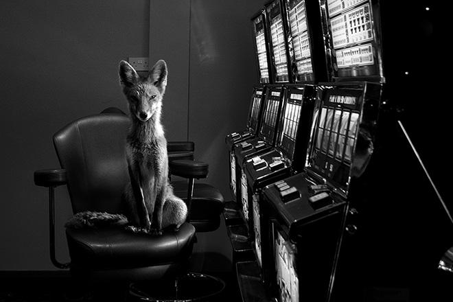 Jason McGroarty - Project Totem, Fine Art Photography Awards