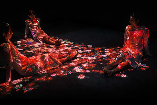 teamLab - Flowers bloom, Transcending Boundaries, Pace London Gallery