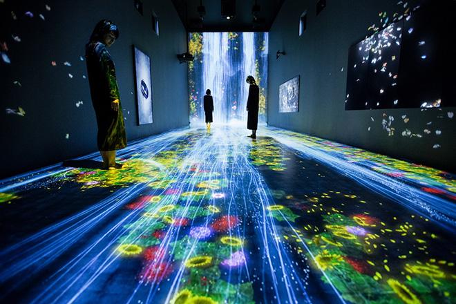 teamLab - Transcending Boundaries, Pace London Gallery