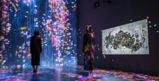 teamLab - Transcending Boundaries, Pace London Gallery