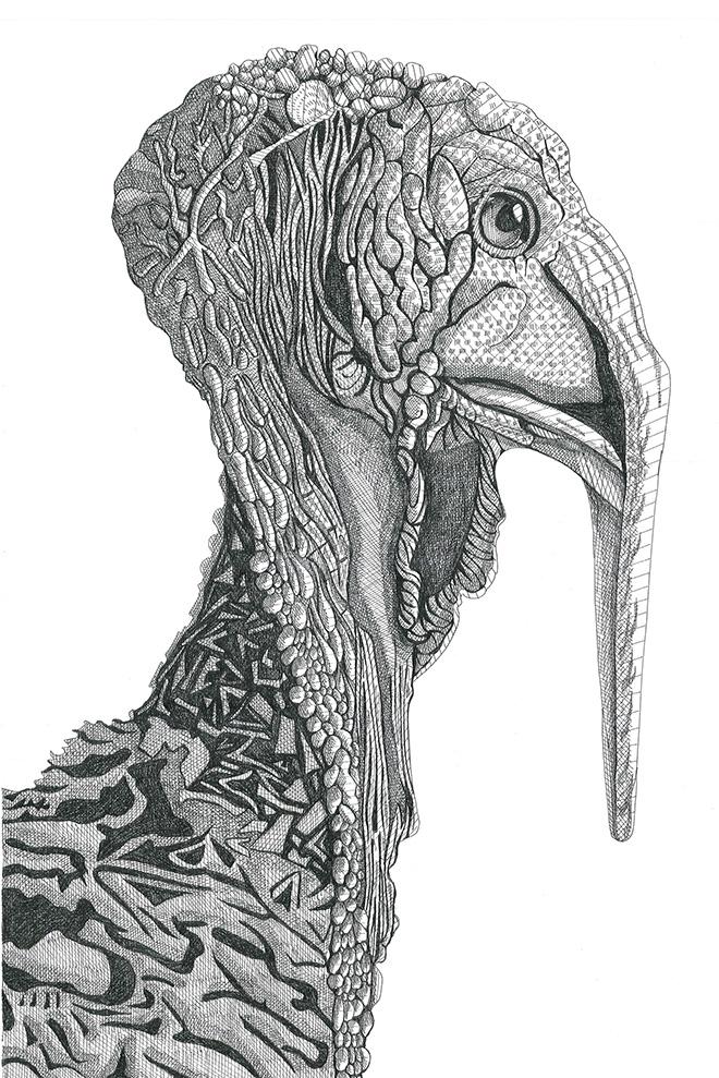 Arianna Fioratti Loreto - Turkey, (2017) Pen and black ink on paper – 33 x 47,5 cm