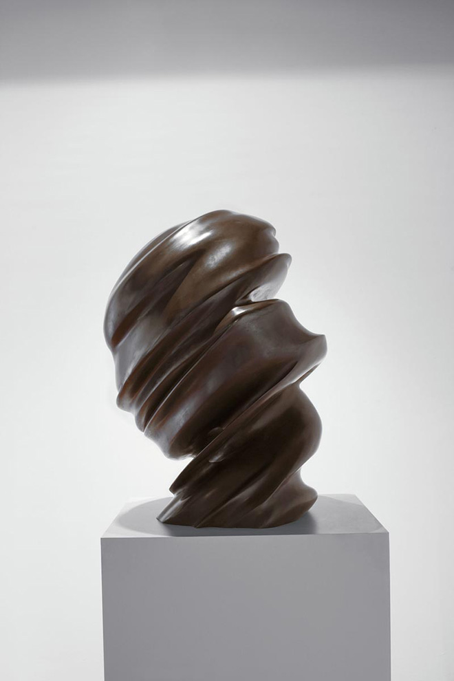 TONY CRAGG - Untitled (Secret thoughts), 2002, bronzo patinato, 85 x 60 x 50 cm. BSI Art Collection, Svizzera