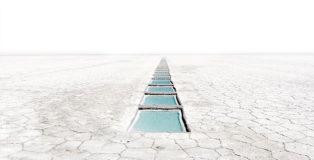 Fabrizio Ceccardi - Senza titolo, serie Out of Eden, 2010-11, stampa lambdacolor, cm. 113x99