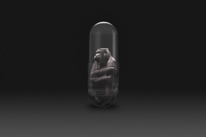 Gianluca Micheletti - Lifepod, capsula di salvataggio